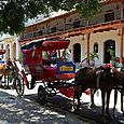 Horse and Carriages in Granada
